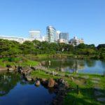 Beneficios de incorporar la naturaleza a nuestras ciudades.