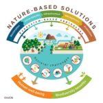 Estándar mundial de la UICN para soluciones basadas en la naturaleza