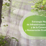 Aprobada la Estrategia Nacional de Infraestructura Verde y de la Conectividad y Restauración Ecológicas, clave para recuperar los ecosistemas españoles y conectarlos entre sí.