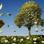 Invertir en infraestructura verde