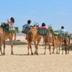 Turismo en Áreas Naturales Protegidas: una discusión sobre su pertinencia