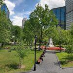 Bosques urbanos y cambioclimático